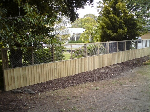 Paling and mesh boundary fence.